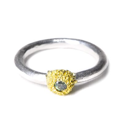 fused nest ring